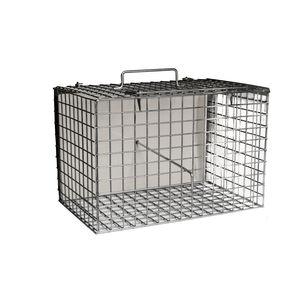 veterinary cage