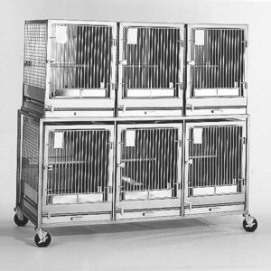 cat animal research cage