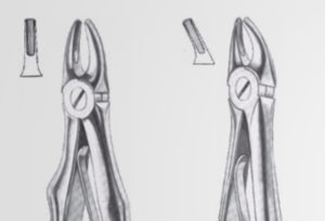 premolar dental extraction forceps / for upper incisors