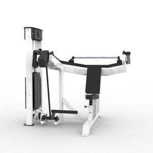 triceps extension gym station