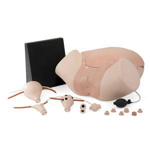 gynecological care training manikin