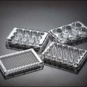 cell culture microplate / tissue culture / 24-well / 48-well