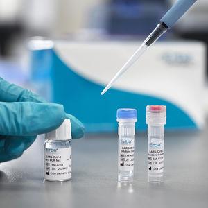 COVID-19 rapid diagnostic test