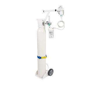 trolley-mounted oxygen therapy system
