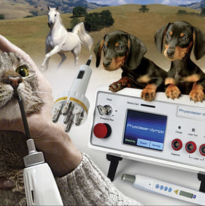 veterinary acupuncture laser / diode / tabletop