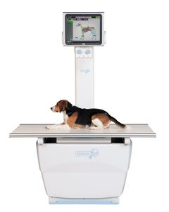 veterinary X-ray system / digital