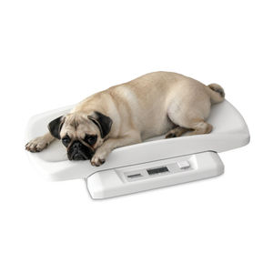 electronic veterinary weighing scale