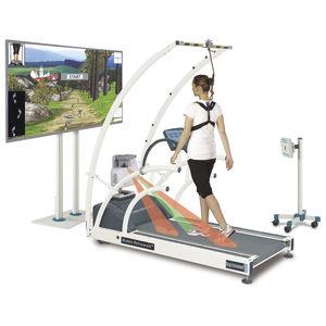 gait rehabilitation system