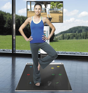 balance rehabilitation system