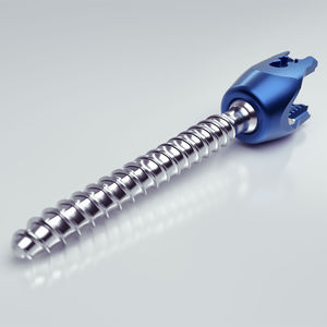 thoracic-lumbar vertebra pedicle screw