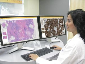 visualization web application / analysis / data management / for histology laboratories