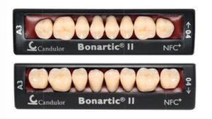 nanocomposite dental prosthesis / anterior teeth