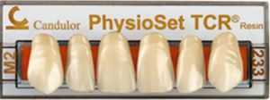 resin dental prosthesis