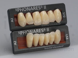 nanocomposite dental prosthesis