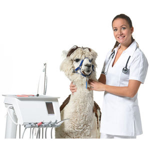 mobile dental delivery system / veterinary