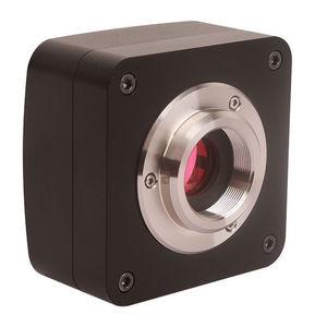 microscope video camera / digital / CCD / USB