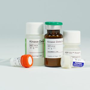 biological activity assay kit / for medical research / for enzymes / ATP