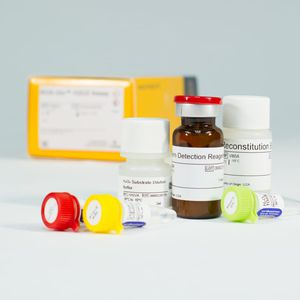 oxidative stress assay kit / for medical research / hydrogen peroxide / cell