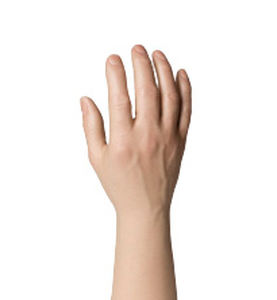 hand cosmetic prosthesis / adult