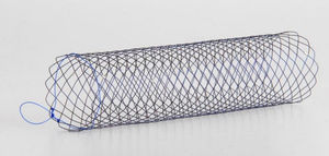 duodenal stent