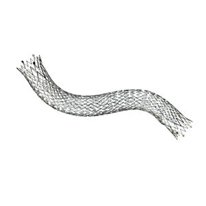 femoral artery stent