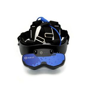veterinary ultrasound imaging head mounted display