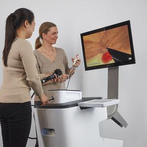 endoscopy simulator