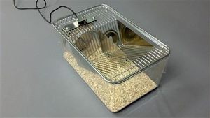 veterinary cage for research applications