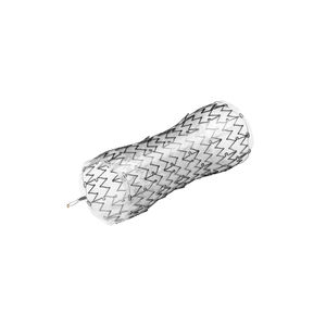 esophageal stent