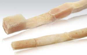 calcaneal tendon ligament prosthesis