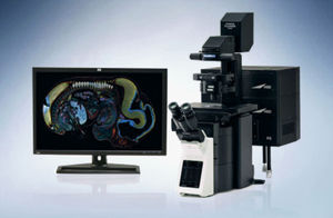 confocal laser scanning microscope / laboratory / for research / digital