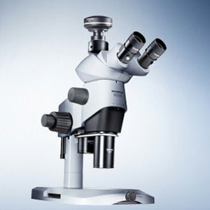 laboratory stereo microscope