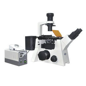 fluorescence microscope / laboratory / for biotechnology / education