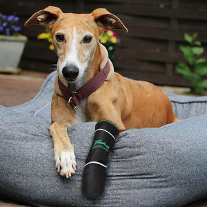breathable veterinary walker boot