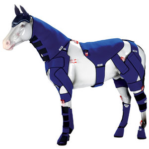 equine veterinary orthosis