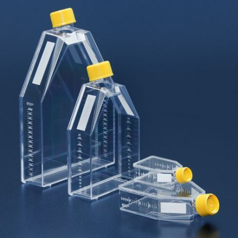 tissue culture flask