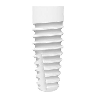 cylindrical dental implant / ceramic / zirconium dioxide / internal
