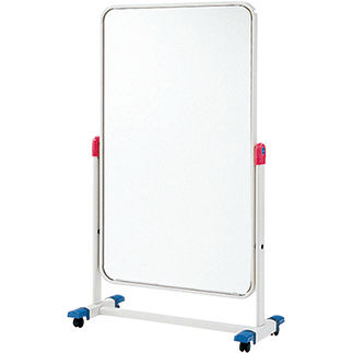posture mirror on casters
