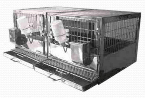 rabbit veterinary cage