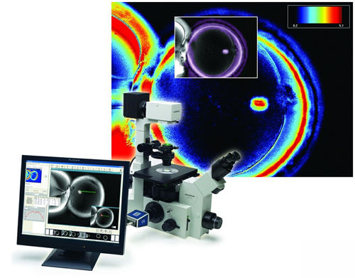 automatic cell imaging system