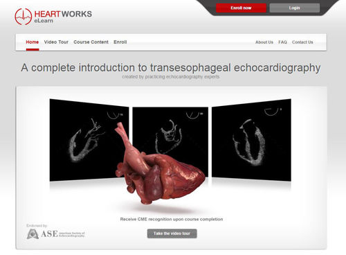 training software / for echocardiography / web-based