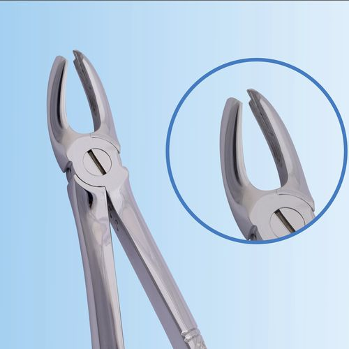 upper molar dental extraction forceps / English pattern