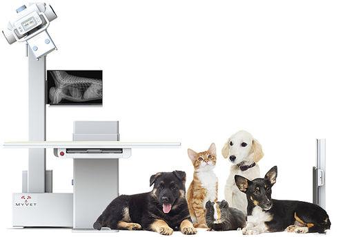 veterinary X-ray system / digital