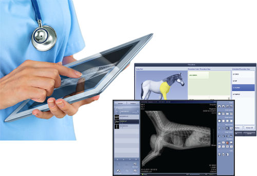 management software / acquisition / image capture / for veterinary radiology