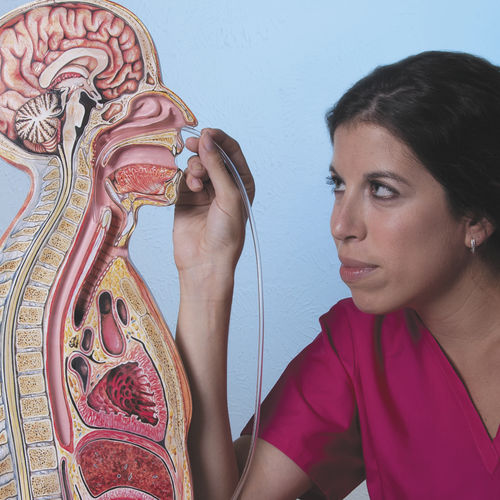 nasogastric intubation simulator