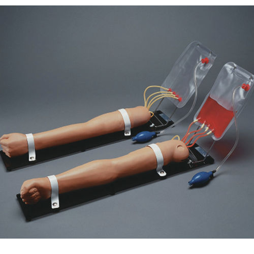 injection simulator / infusion / blood collection / arm