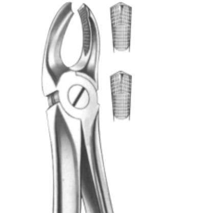 upper molar dental extraction forceps