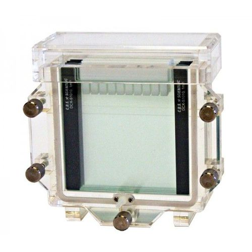 vertical electrophoresis chamber