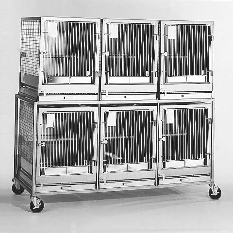cat animal research cage / modular / two-level