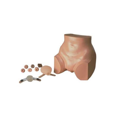 gynecological care training manikin / pelvis